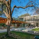Perkins + Will Architecture House around the Tree São Paulo, Brasilien