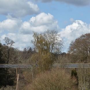 In Augenhöhe mit den Bäumen, der Stihl Treetop Walkway von Glenn Howells Architects