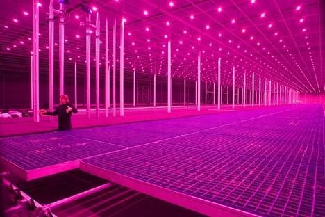 Countryside, The Future Ausstellung von AMO / Rem Koolhaas im Guggenheim von New York