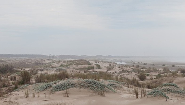 Casa RM von Alric und Galindez, zwischen Pampa und Atlantik