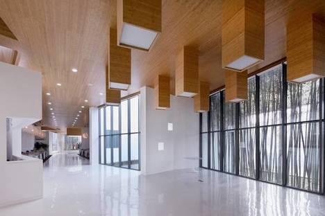 L'open space e il soffitto in impiallacciatura di bambù