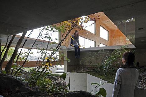 UID architects: Nest, der Wald als Haus