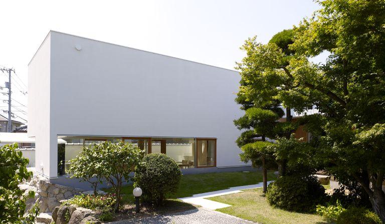 Ogawa natur und architektur im baumhaus mit baeumen in for Architektur und natur