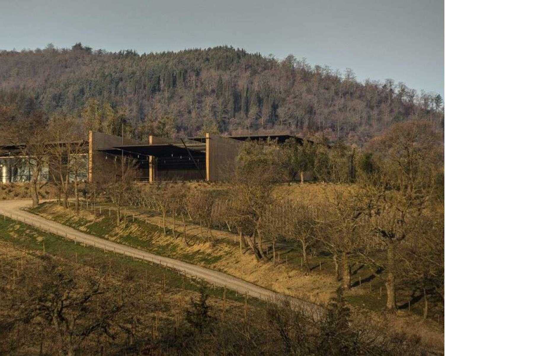 Die weinkellerei bulgari von alvisi kirimoto in san casciano dei