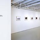 Exhibition Denise Scott Brown Photographs, 1956-1966