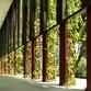 OASIA HOTEL Der grüne Wolkenkratzer in Singapur – WOHA Architects
